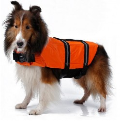 Gilet de sauvetage orange...